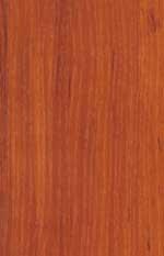 D 1972 SE Яблоня локарно