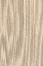 D 2381 Кедр (Лимба)