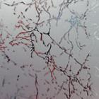 Зеркало Уади серебро