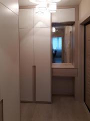 Встроенный шкаф с зеркалом в прихожую