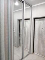 Зеркальный 2-х дверный шкаф купе