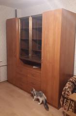 Стильный шкаф с книжными витринами от производителя