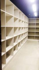 Встроенная мебель. Система хранения.